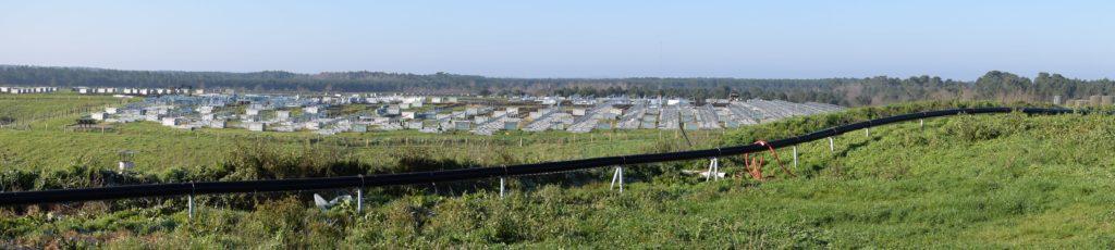 parc photovoltaique SMICOTOM et Valorem Le stockage des déchets ultimes SMICOTOM 33
