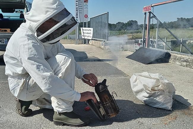 decheterie jau abeillebis Les abeilles colonisent la benne mobilier SMICOTOM 33
